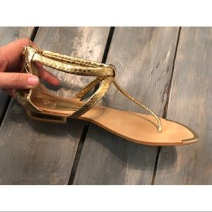 Isola Gold Sandals